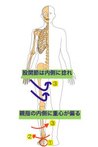 股関節内旋 のコピー 2