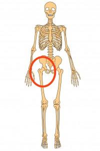 股関節痛 のコピー